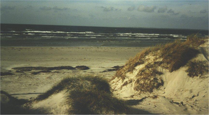 Klik for www.boisen-erhverv.dk